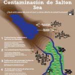 Contaminación de Salton Sea